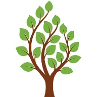 Green_Tree_RAW