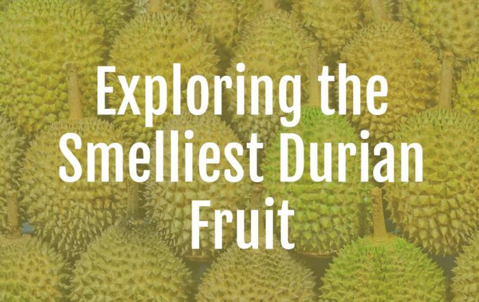 Exploring Durian Fruit